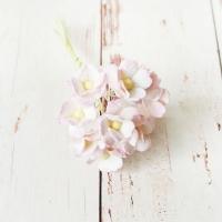 Цветы вишни Бело-розовые (средние), 10шт.