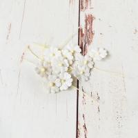 Цветочки маленькие Белые, 10шт.