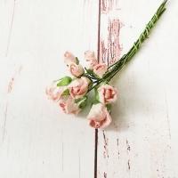 Бутоны роз малберри Бело-розовые, 10шт.