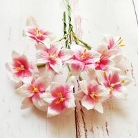 Лилии на стебле Бело-розовые, 10шт.