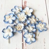 Цветки вишни, Бело-синие, 10шт.