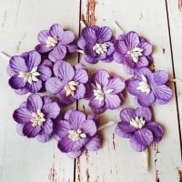 Цветки вишни, Лавандовые, 10шт.