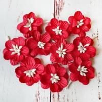 Цветки вишни, Красные, 10шт.