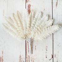 Листья Папоротника, Белые (2х6см) 10шт.